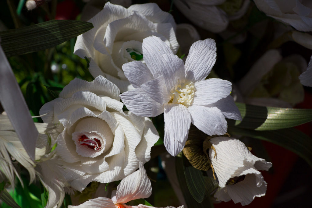 Семинария приняла участие в 4-ой благотворительной акции «Белый цветок»
